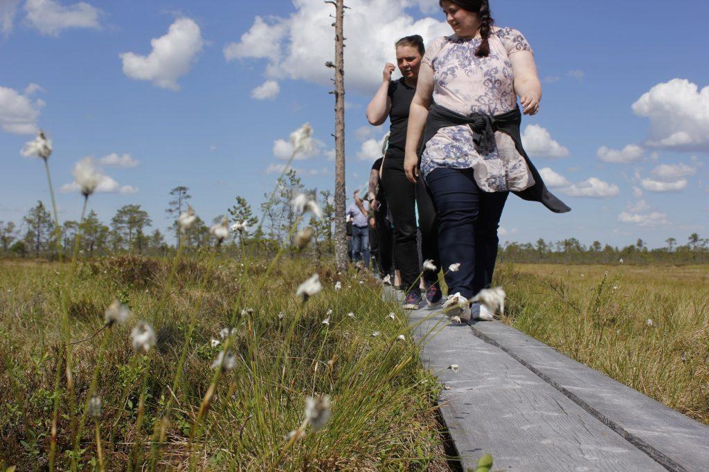 Ihmisiä kävelee pitkospuilla