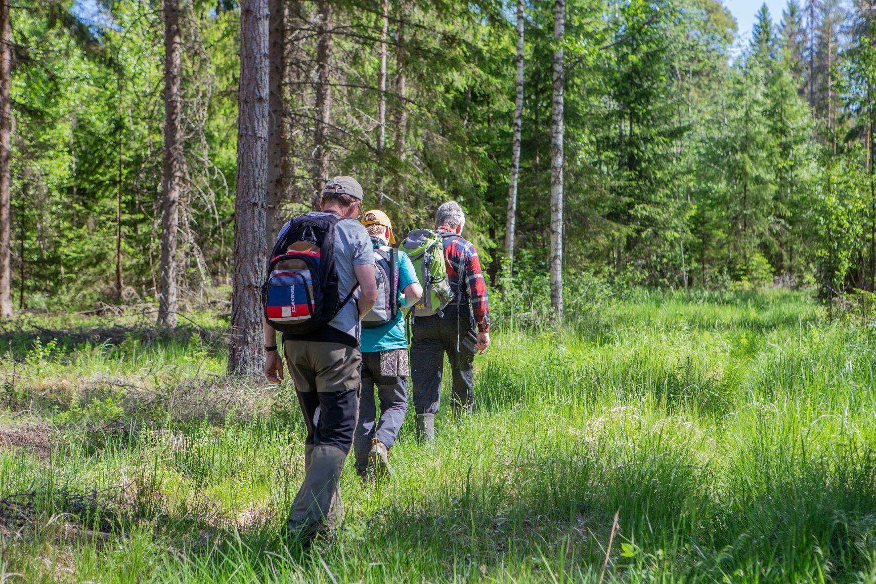 vaeltajat metsässä