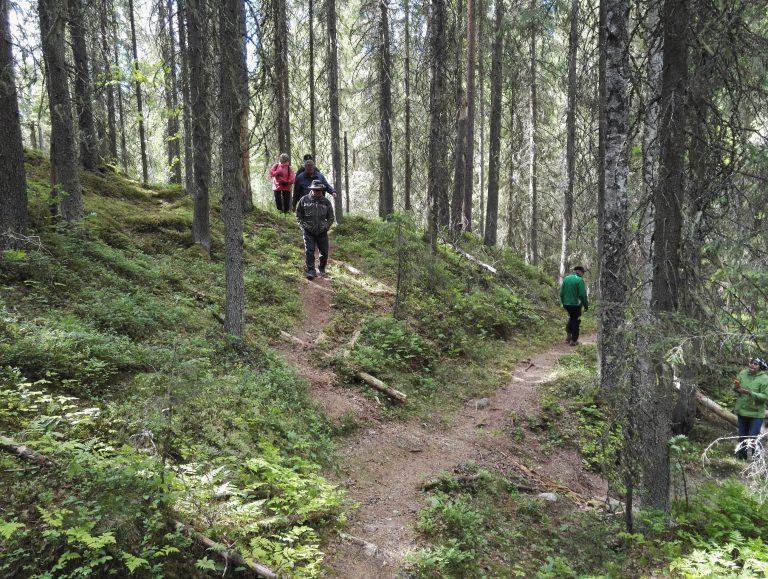 kolme ihmistä metsäpolulla